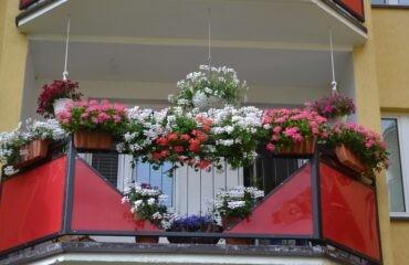 balkony-16-800×533
