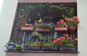 balkony-2-800×533