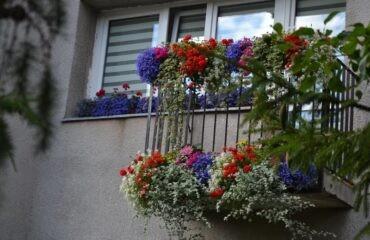 balkony-8-800×533