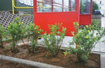 zielony-przystanek (3)