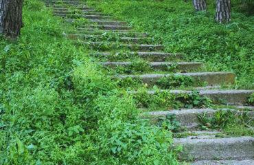 schody-nad-czarna-hancza (3)