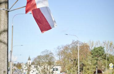 flagi (4)